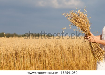 A handful of oats on a sunny day as agricultural background. Harvesting. - stock photo