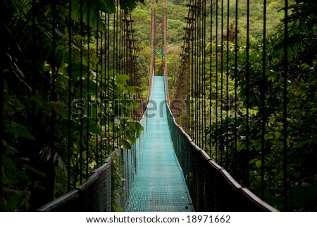 a hanging bridge in the costa rican jungle