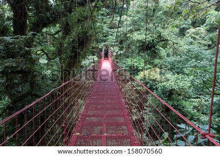 A hanging bridge in the monteverde cloudforest, Costa Rica - stock photo