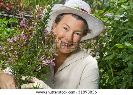 A happy mature woman thinning out the rosemary in her garden. Closeup shot.
