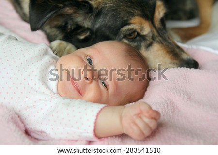 A happy, smiling newborn baby girl is snuggling on a pink blanket with her adopted  German Shepherd Mix breed guard dog. - stock photo