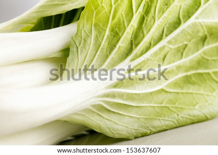 A head of paksoy lettuce, on a white ceramic plate, shot against a white background