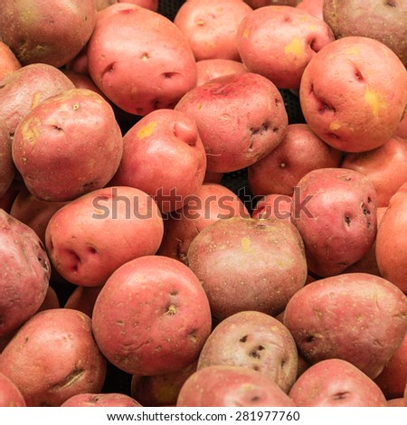 A heap of red potatoes tubers in a supermarket at Colfax, Whitman County, Washington, USA. - stock photo