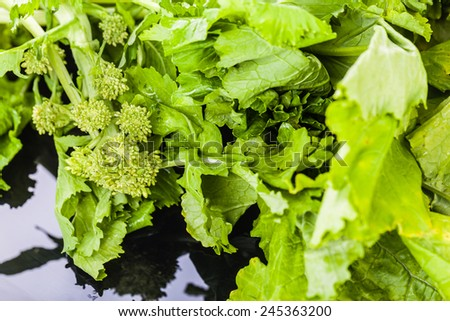 a heap of turnip greens over a sleek reflective black surface - stock photo