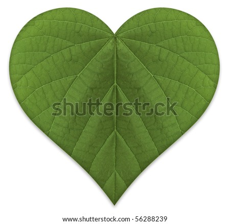A heart shaped green leaf, symbolizing love for the environment and a sustainable future.