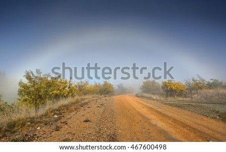 A heavy fog in rural outback and, fog bow  arching across stony dirt road lined with flowering wattle -   barely visible the wind turbines quietly turn generating clean renewable energy.