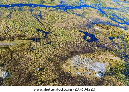 A herd of elephants in the Okavango delta (Okavango Grassland) is one of the Seven Natural Wonders of Africa (view from the airplane) - Botswana, South-Western Africa - stock photo