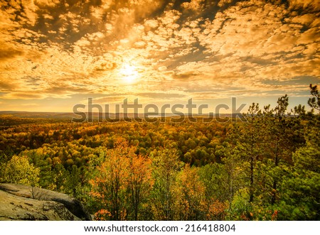 A high angle view of the colorful treetops of an autumn forest.  Sunlight is filtered by soft clouds in a blue sky.  - stock photo