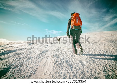 A hiker and their dog on a snow covered summit in the Scottish Highlands, UK. Added grain and colour styling.