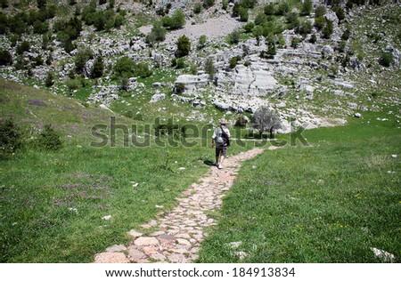 A hiker walking down a path towards a mountain. - stock photo