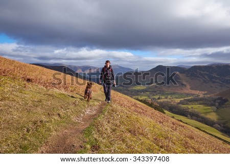 A hiker walking with their dog towards the Summit of Robinson over High Snab Bank in the English Lake District, UK.                                - stock photo