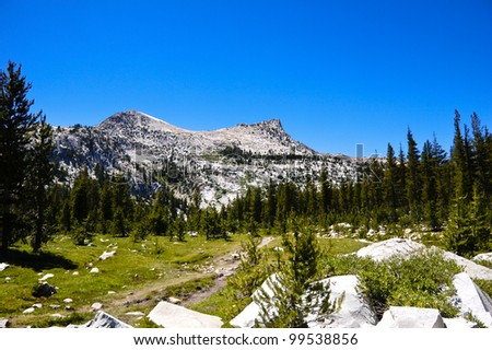 A hiking path in Yosemite National Park, California in summer