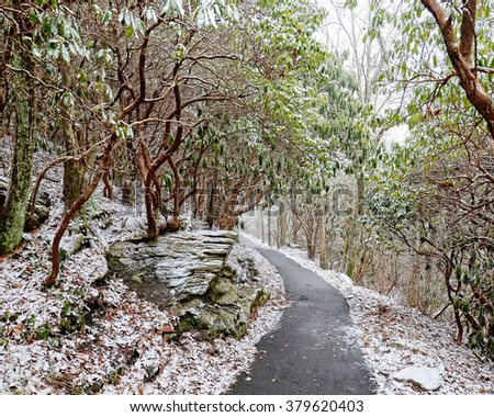 A hiking trail with a light dusting of snow at Brasstown Bald.