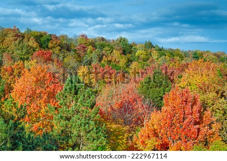 A hillside in Michigan's Cut River Valley displays an wide palette of spectacular fall foliage colors with a cloudy blue sky overhead. - stock photo
