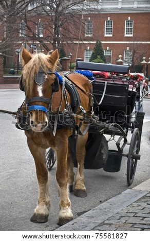 "A horse and carriage in ""old city"" Philadelphia outside of Independence Hall."