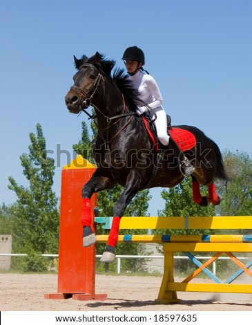 A horse clearing a jump. Taken at the Horse's contest, Almaty, Kazakhstan - stock photo