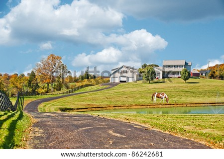 A horse grazing near a pond at a horse farm in the hills of Kentucky USA in autumn. - stock photo