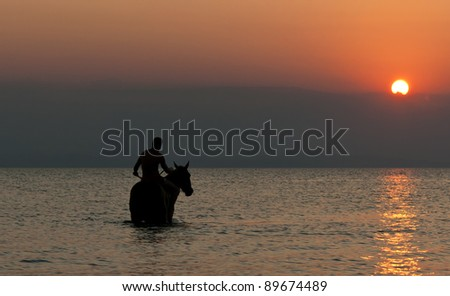 A horseback rider with his horse inside swim and enjoy the summer sunset. The photo was taken from late afternoon of the summer of 2011 a the beach of Thessaloniki, Greece.