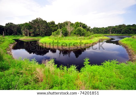 a horseshoe bend of a river at Paynes Prairie Preserve State Park - stock photo