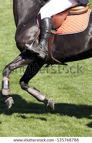 A horsewoman ready for a equestrian competition - stock photo