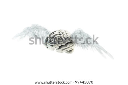 A human brains with wings - free mind concept - stock photo