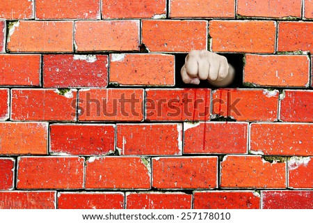 A human fist punch through a brickwall for the concept of breaking through the barrier.  - stock photo
