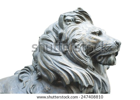 A isolated lion's head on white background - stock photo