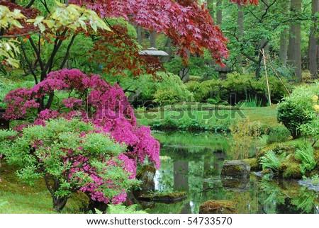 a japanese garden 2 - stock photo