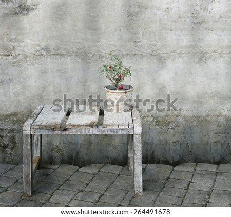 A jar containing a small plant of red berries isolated on a bench with wall and flooring - stock photo