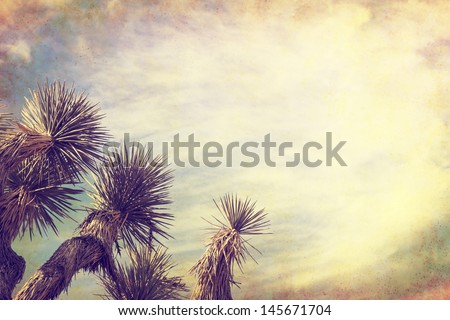A Joshua tree in California's Mojave desert.  Image is done in a retro, vintage style with cross-processed colors and grunge paper textures. - stock photo