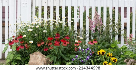 A jumble of daisies, red coneflowers, violas, astilbes, and yellow pansies in front of an old fashioned white wooden fence.