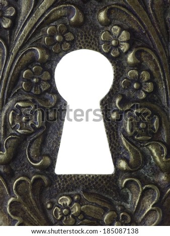 A key hole with a lot of flowers engraved nearby. - stock photo