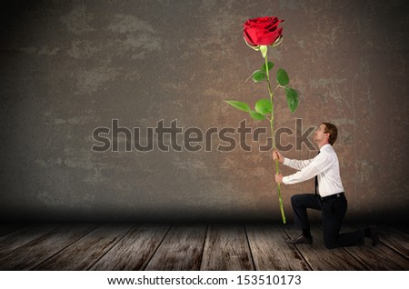 a kneeling man holds a big red rose before rustic background