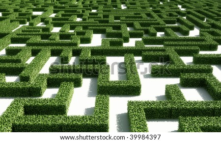 A labyrinth consisting of green bushes on a white plane