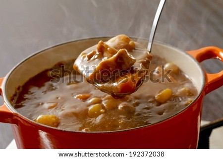 A ladle lifting food out of a pot of beef casserole. - stock photo
