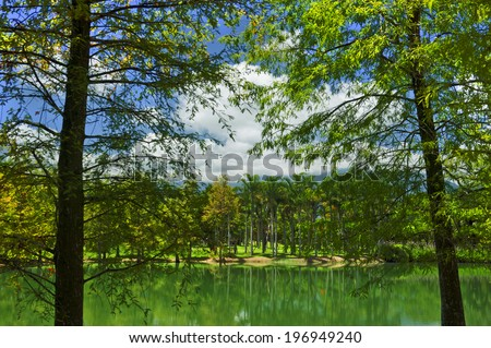 A lake reflecting the tall trees surrounding it.