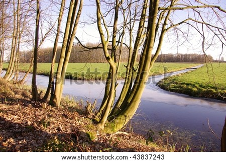 A landscape of trees and meadows - stock photo