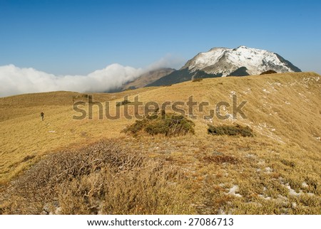 A landscape with snow mountain peak and yellow grassland.
