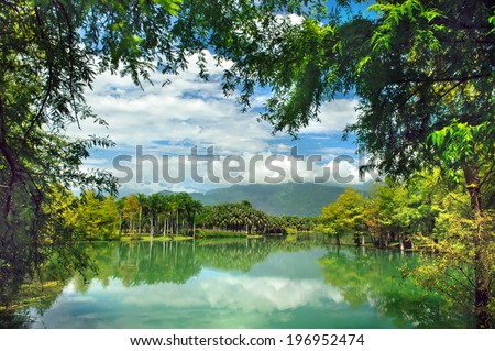 A large bay surrounded by trees with a cloudy sky. - stock photo
