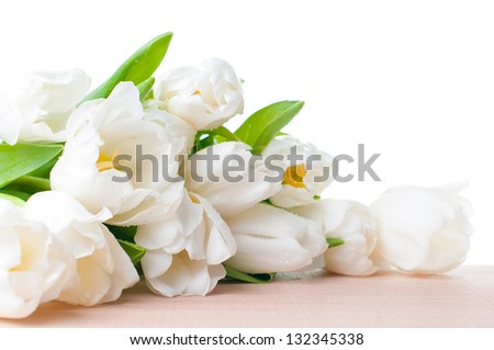 A large bouquet of white tulips isolated, close-up