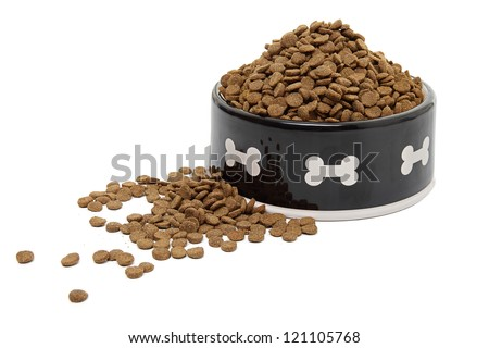 A large bowl of dog food spilling onto a white background. - stock photo