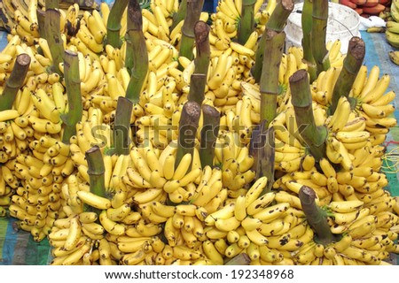 A large bunch of bananas in a indigenous market of Ecuador - stock photo