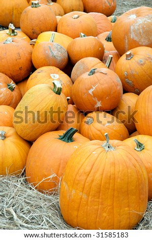 A large group of pumpkins piled up ready for selling for fall, Thanksgiving, or Halloween in the vertical  format.