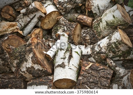 a large pile of firewood