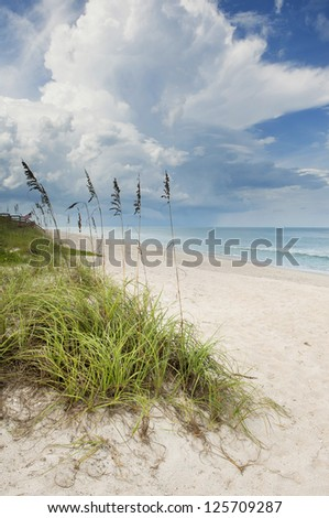 A large storm cloud approaching in the distance over the Atlantic ocean with green grassy sand dunes in the foreground