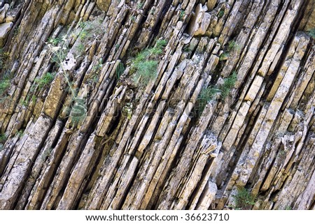 A layered grey stone texture or background. Northern Caucasia