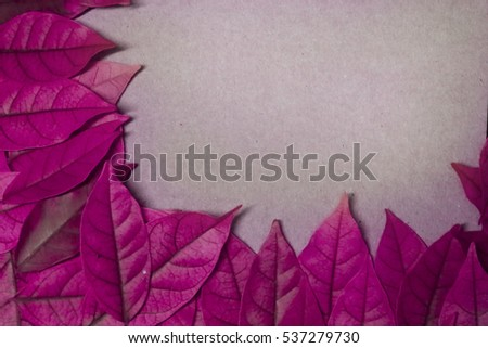 A leaves on a vintage color tone, grunge paper background.