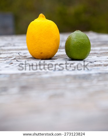 a lemon and a lime on wooden table with flaking paint with copy space - stock photo