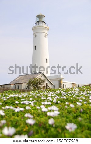 A lighthouse in Cape St Francis - Eastern Cape, South Africa - stock photo