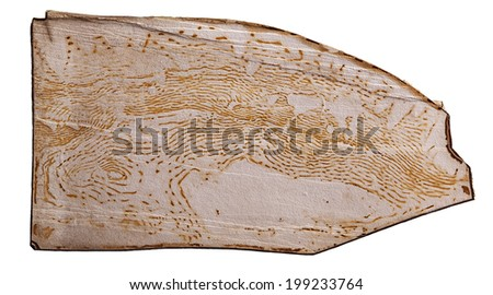 A limonite (iron oxide) pattern developed in the natural bedding plane separation between sandstone layers.  An unusual pattern that closely resembles a USGS topographic map. - stock photo